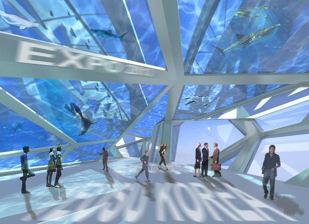 Ý tưởng thiết kế dự án Ocean Imagination