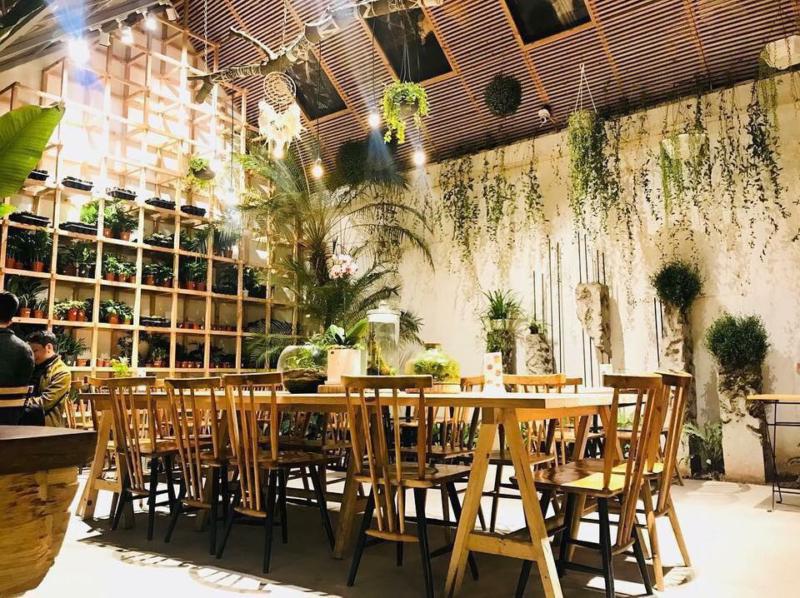 Các thiết kế quán cafe sân vườn đẹp