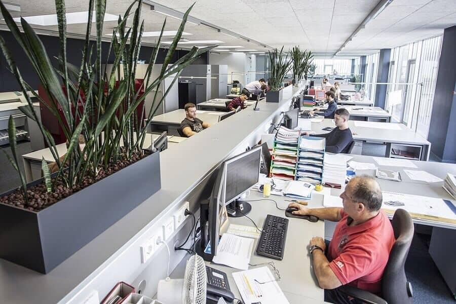 Đưa các yếu tố thiên nhiên vào văn phòng